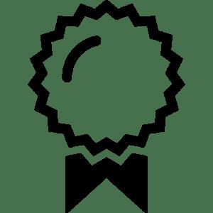 icono medalla png